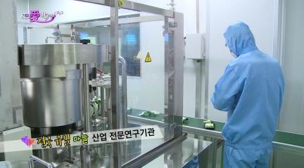 서경방송_기업愛발견_남해마늘연구소